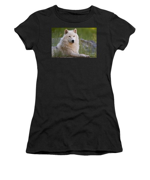 Arctic Wolf Women's T-Shirt (Athletic Fit)
