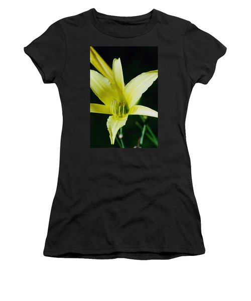 3d Yellow Daylily Women's T-Shirt (Junior Cut) by Belinda Lee
