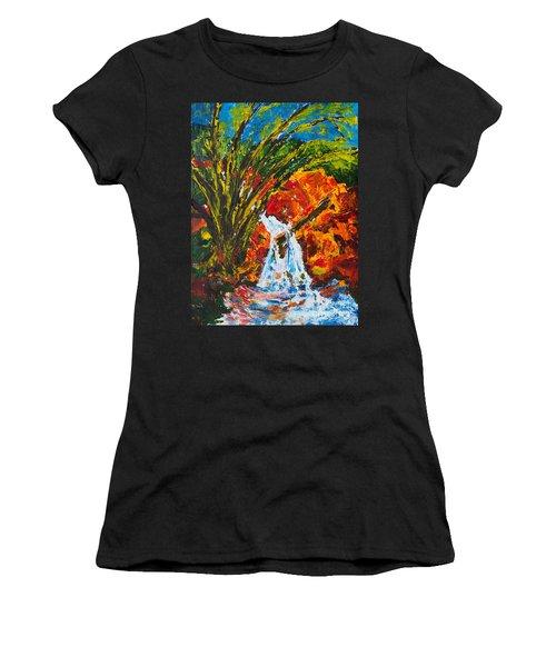 Burch Creek Waterfall Women's T-Shirt