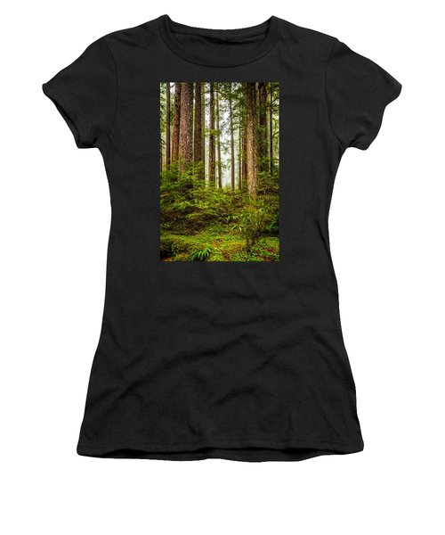 A Walk Inthe Forest Women's T-Shirt (Junior Cut)