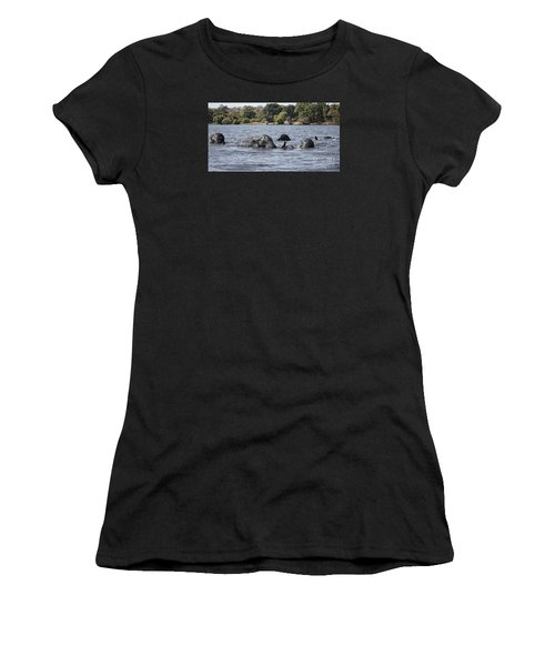 African Elephants Swimming In The Chobe River Women's T-Shirt