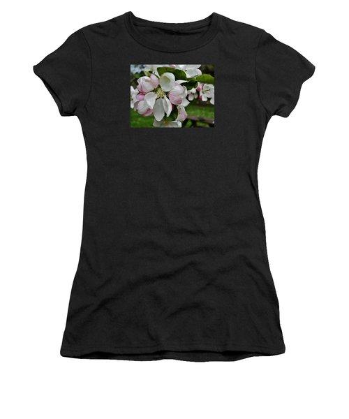 Apple Blossoms 2 Women's T-Shirt (Athletic Fit)