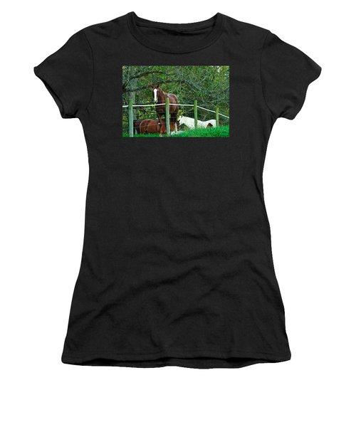 Apple Dreams Women's T-Shirt