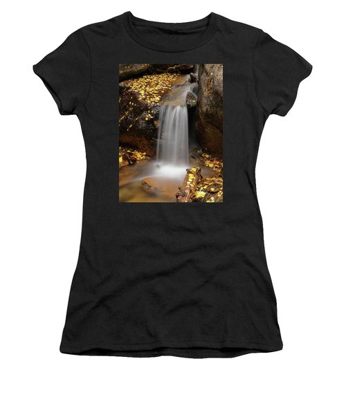Autumn Gold And Waterfall Women's T-Shirt (Athletic Fit)