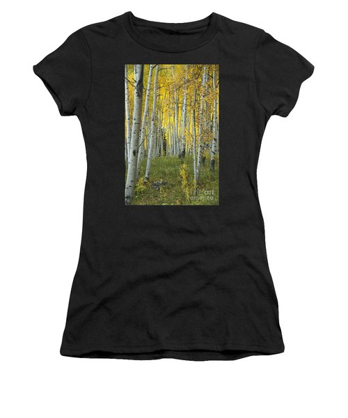 Autumn In The Aspen Grove Women's T-Shirt