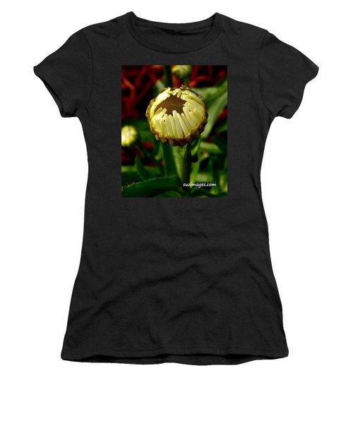 Baby Daisy Women's T-Shirt