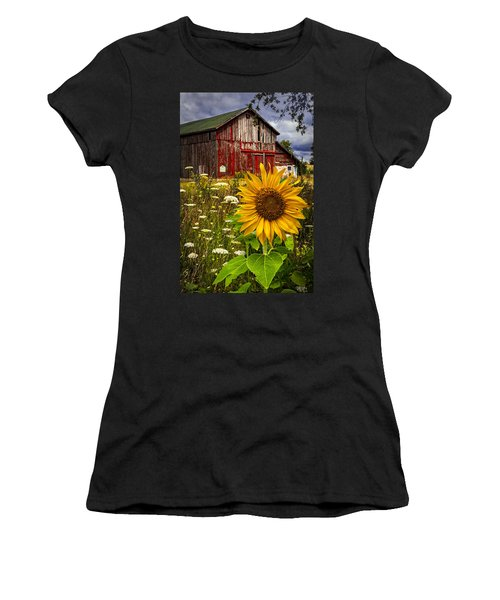 Barn Meadow Flowers Women's T-Shirt (Athletic Fit)