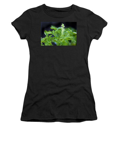 Women's T-Shirt (Junior Cut) featuring the photograph Basil With White Flowers Ready For Culinary Use by David Millenheft