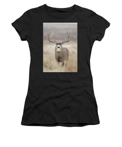 Women's T-Shirt featuring the photograph Big Sky On Snowy Day by D Robert Franz