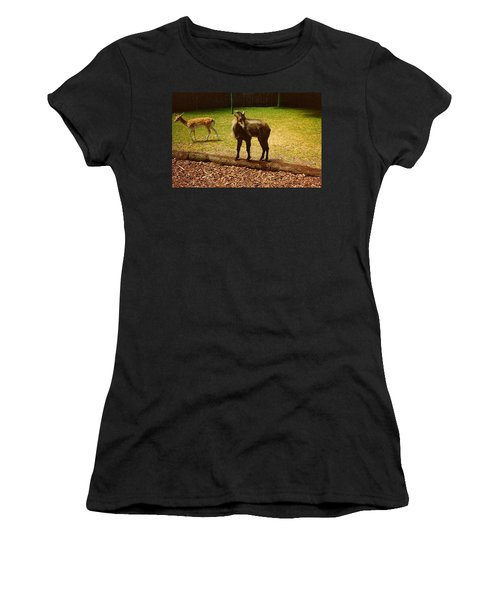 Women's T-Shirt (Junior Cut) featuring the photograph Billy Goat Keeping Lookout by Amazing Photographs AKA Christian Wilson