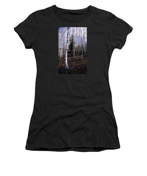 Birches Women's T-Shirt (Junior Cut) by Skip Willits