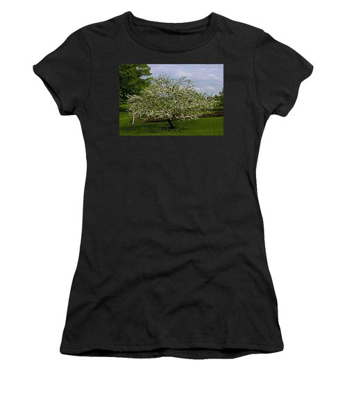 Women's T-Shirt (Junior Cut) featuring the painting Birth Of Apples by John Haldane