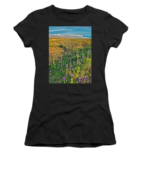 Bluebonnets And Creosote Bushes In Big Bend National Park-texas Women's T-Shirt (Athletic Fit)