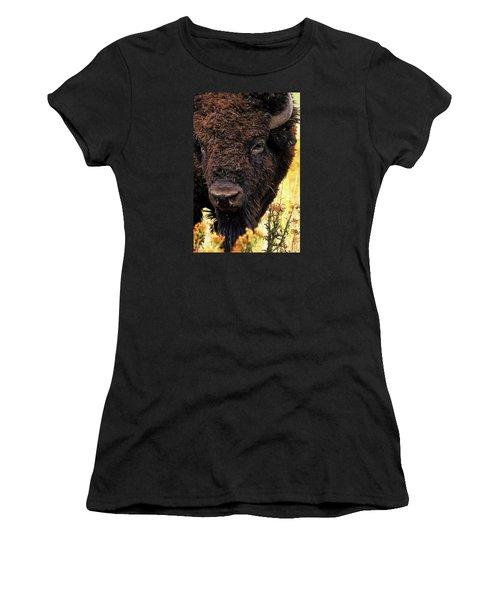 Ragweed Buffalo Women's T-Shirt (Junior Cut) by Jim Pavelle