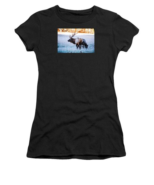 Bull Elk And Cow Women's T-Shirt (Athletic Fit)
