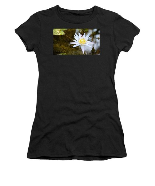 Women's T-Shirt (Junior Cut) featuring the photograph Busy Bee by Dave Files