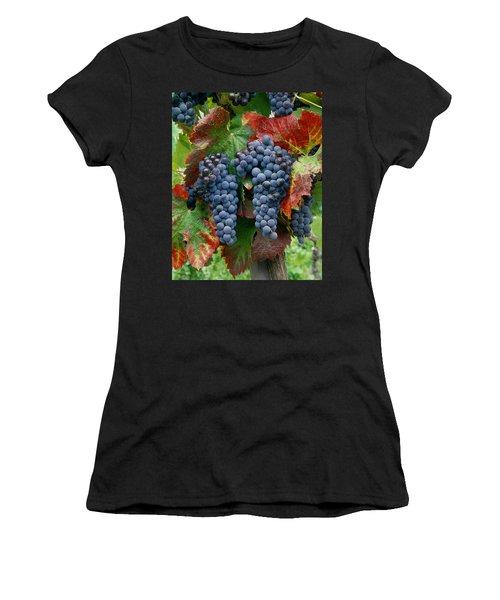 5b6374-cabernet Sauvignon Grapes At Harvest Women's T-Shirt