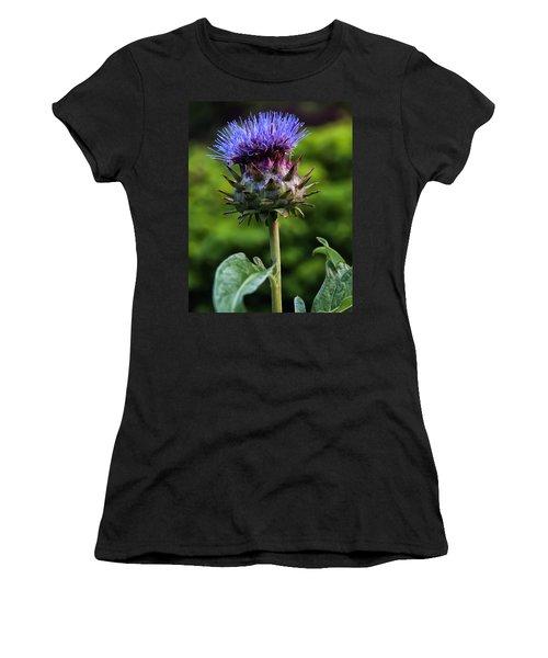 Cardoon Women's T-Shirt (Junior Cut) by Chris Flees