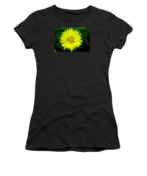 Women's T-Shirt (Junior Cut) featuring the photograph Wild Carolina Desert Chicory by William Tanneberger