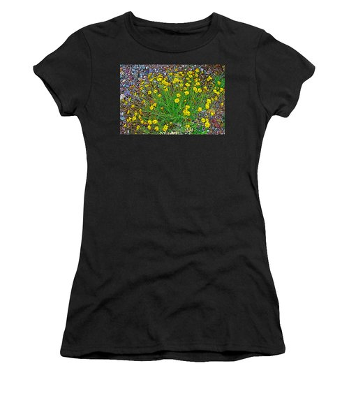 Chinchweed In Big Bend National Park-texas Women's T-Shirt (Junior Cut) by Ruth Hager