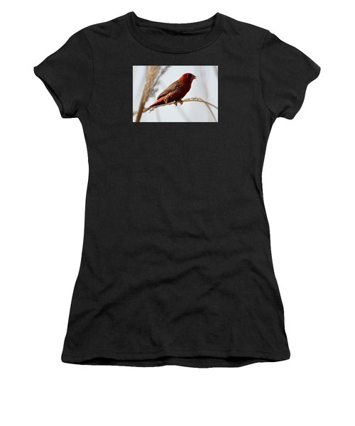 Colour Me Red Women's T-Shirt (Athletic Fit)