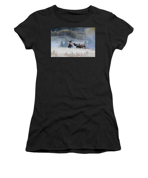 Cool Misty Morning Women's T-Shirt (Athletic Fit)