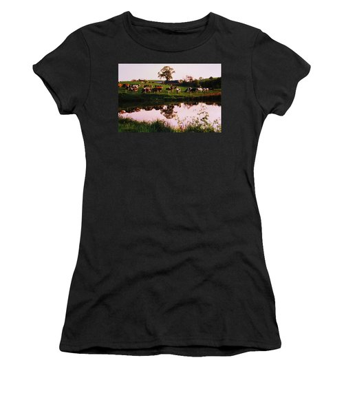 Cows In The Canal Women's T-Shirt (Athletic Fit)
