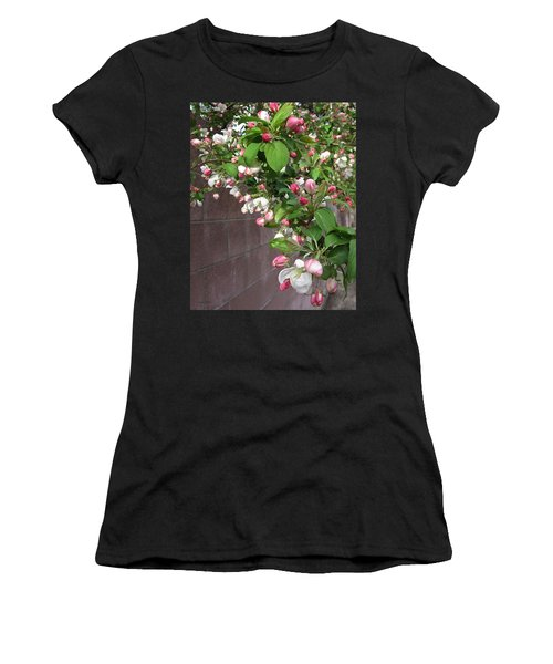 Crabapple Blossoms And Wall Women's T-Shirt