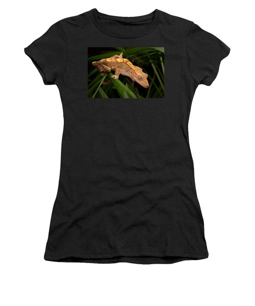 Crested Gecko Rhacodactylus Ciliatus Women's T-Shirt