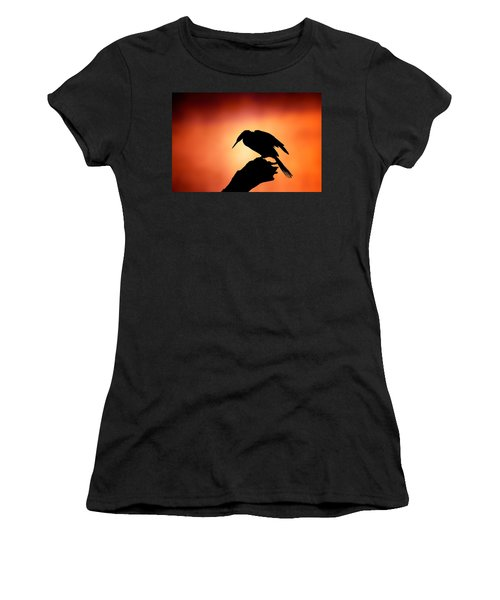 Darter Silhouette With Misty Sunrise Women's T-Shirt