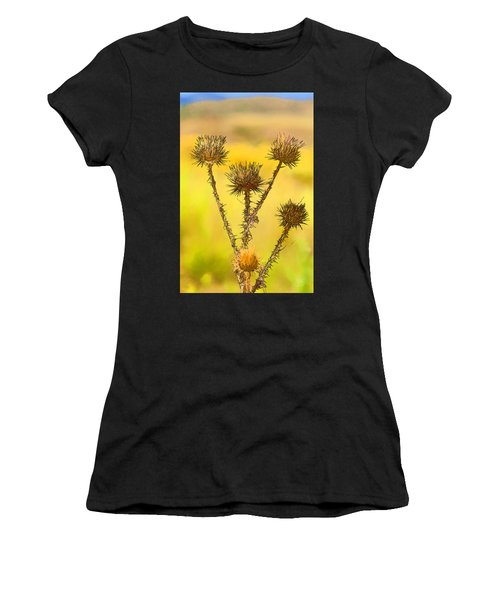 Dry Brown Thistle Women's T-Shirt (Athletic Fit)