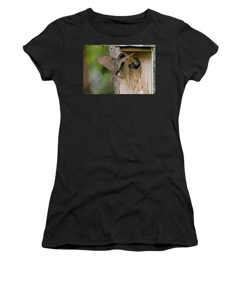 Feeding Starlings Women's T-Shirt (Athletic Fit)