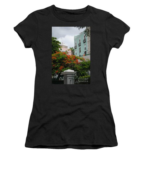Flamboyan In Park Women's T-Shirt