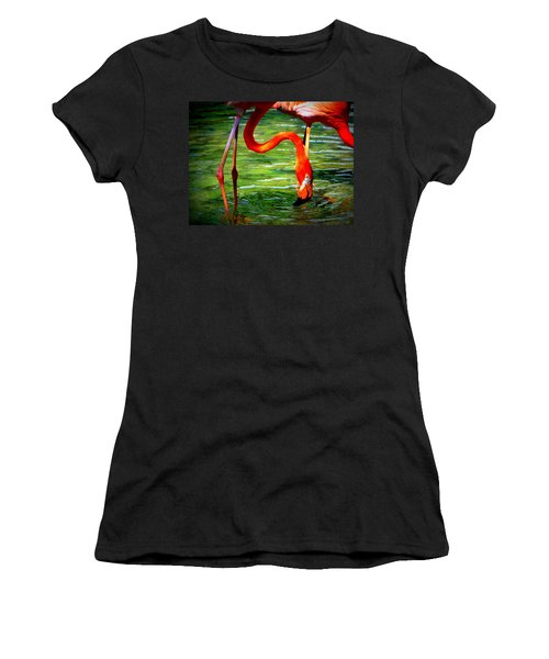 Women's T-Shirt (Junior Cut) featuring the photograph Flamingo by David Mckinney