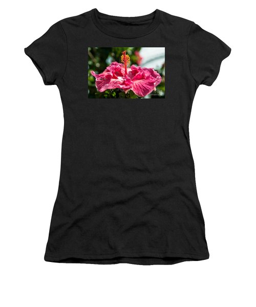 Flower Closeup Women's T-Shirt