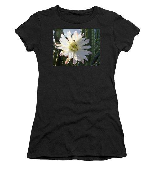 Flowering Cactus 5 Women's T-Shirt