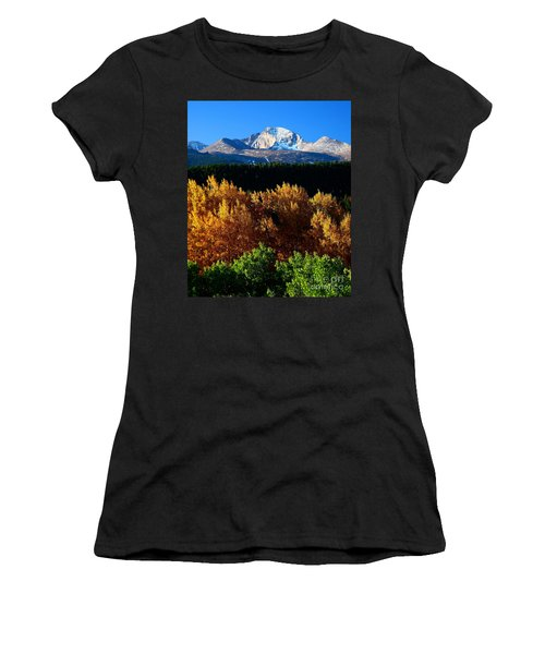 Four Seasons Women's T-Shirt (Junior Cut) by Steven Reed