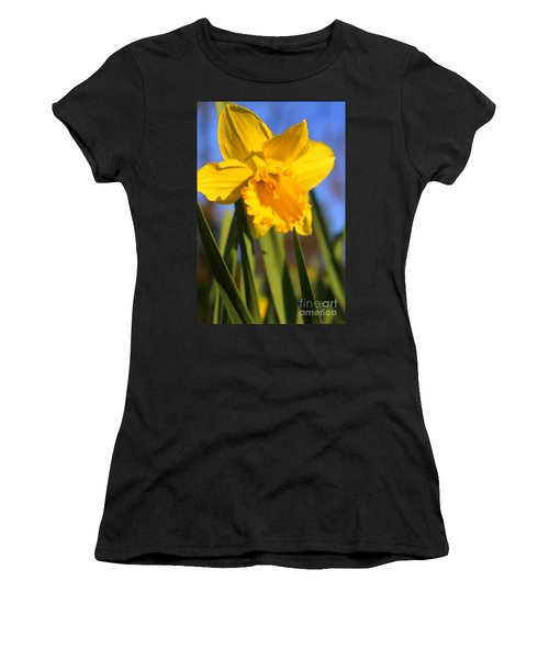 Golden Glory Daffodil Women's T-Shirt (Athletic Fit)