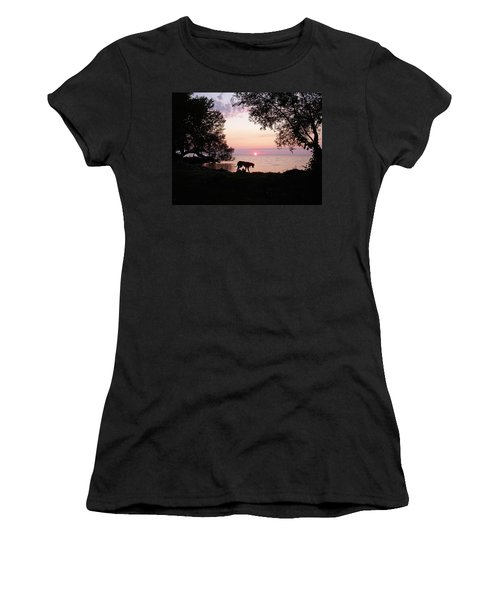 Women's T-Shirt (Junior Cut) featuring the photograph Great Dane Sunset by Aimee L Maher Photography and Art Visit ALMGallerydotcom