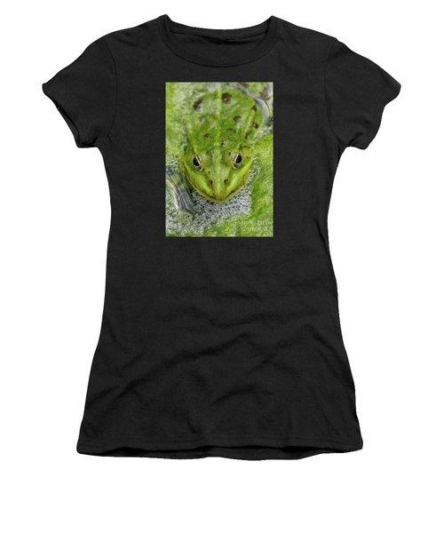 Green Frog Women's T-Shirt (Junior Cut) by Matthias Hauser