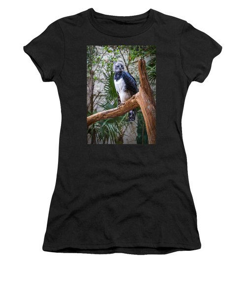 Harpy Eagle Women's T-Shirt (Junior Cut)