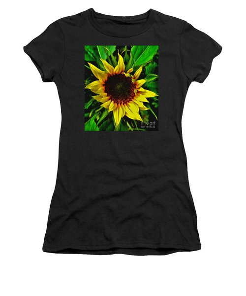 Helianthus Annus - Sunnydays Women's T-Shirt