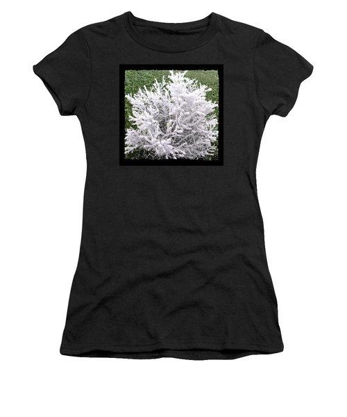 Hoarfrost 20 Women's T-Shirt
