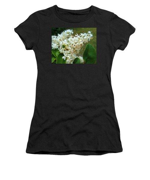 Women's T-Shirt (Junior Cut) featuring the photograph Honeysuckle #1 by Robert ONeil