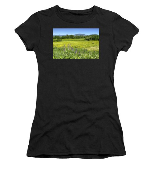 Horse In Buttercup Field Women's T-Shirt (Athletic Fit)