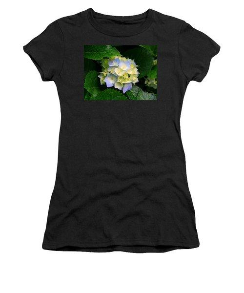 Women's T-Shirt featuring the photograph Hydrangeas by Marian Palucci-Lonzetta