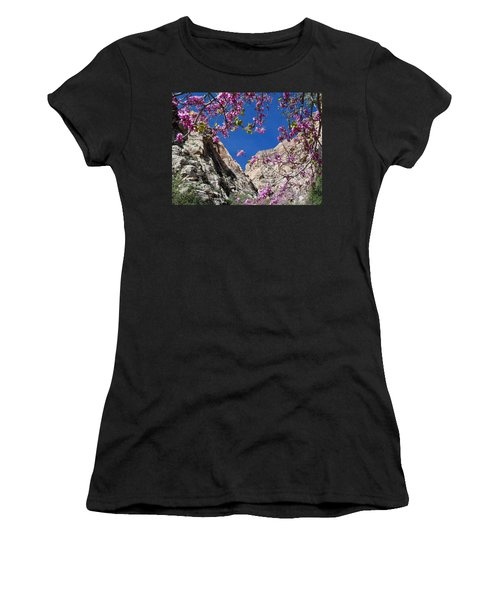 Ice Box Canyon In April Women's T-Shirt (Athletic Fit)