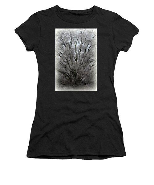 Ice Sculpture Women's T-Shirt