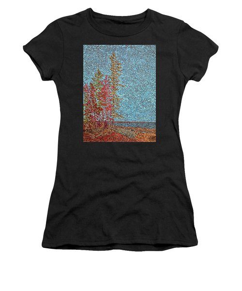 Indian Point - May 2014 Women's T-Shirt