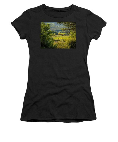 Irish Countryside In Spring Women's T-Shirt